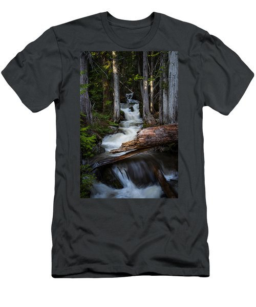 Silver Falls Men's T-Shirt (Athletic Fit)