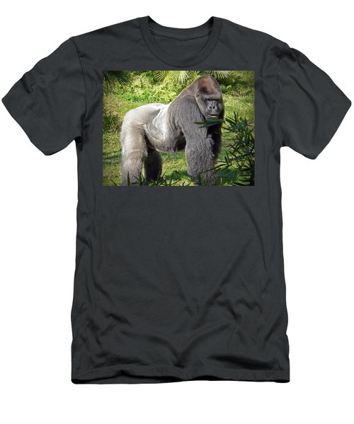 Silverback Men's T-Shirt (Athletic Fit)