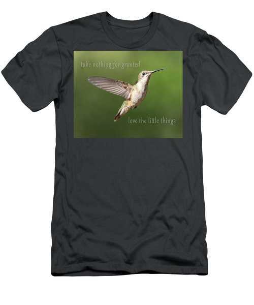 Simple Country Truths Hummingbird Men's T-Shirt (Athletic Fit)