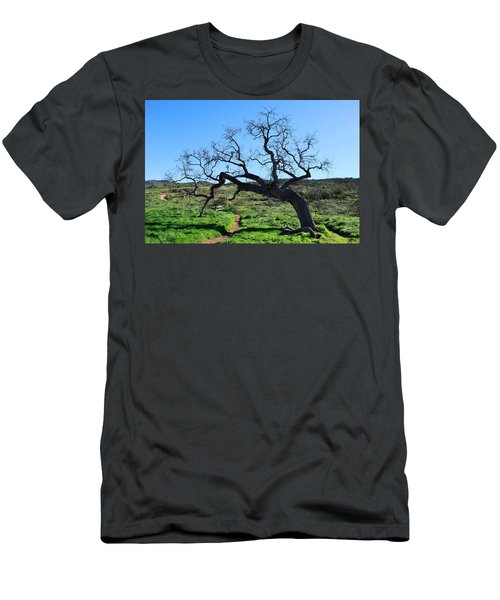Single Tree Over Narrow Path Men's T-Shirt (Athletic Fit)