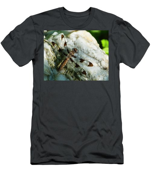 Six Spotted Dragonfly Men's T-Shirt (Athletic Fit)