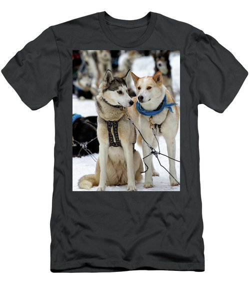 Sled Dogs Men's T-Shirt (Athletic Fit)