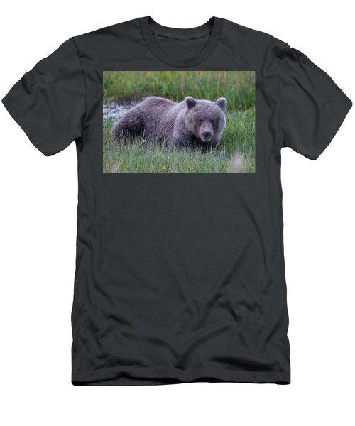 Sleeping Bear Men's T-Shirt (Athletic Fit)