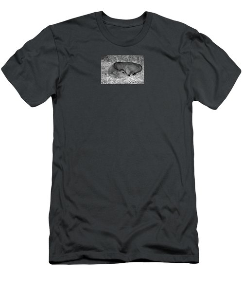 Sleeping Calf Men's T-Shirt (Athletic Fit)