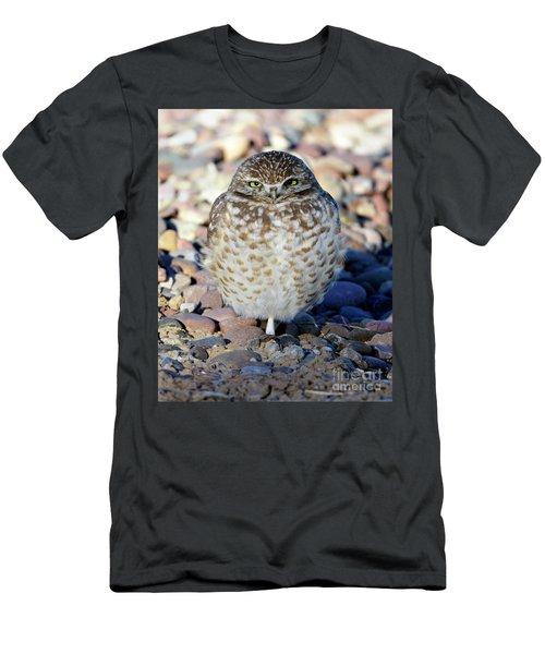 Sleepy Burrowing Owl Men's T-Shirt (Athletic Fit)