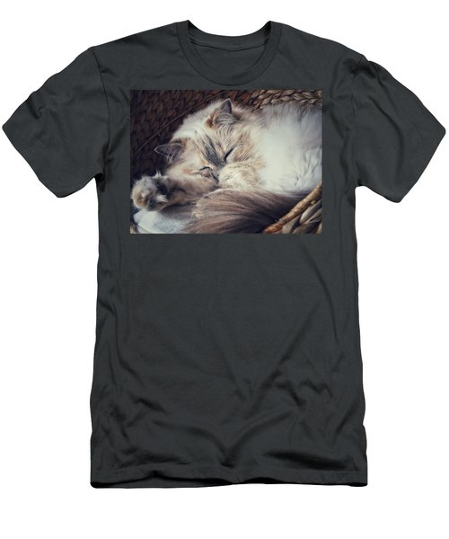 Men's T-Shirt (Slim Fit) featuring the photograph Sleepy Kitty by Karen Stahlros