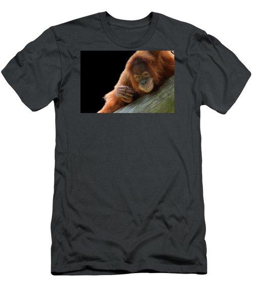 Cute Young Orangutan Men's T-Shirt (Athletic Fit)
