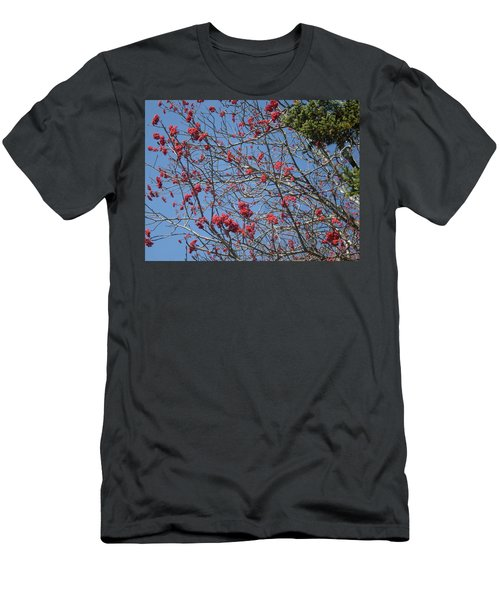 Smokies 8 Men's T-Shirt (Slim Fit) by Val Oconnor