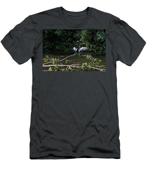 Snake Bird Perching Men's T-Shirt (Slim Fit) by James David Phenicie