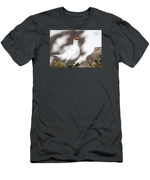 Snow Bird Men's T-Shirt (Athletic Fit)