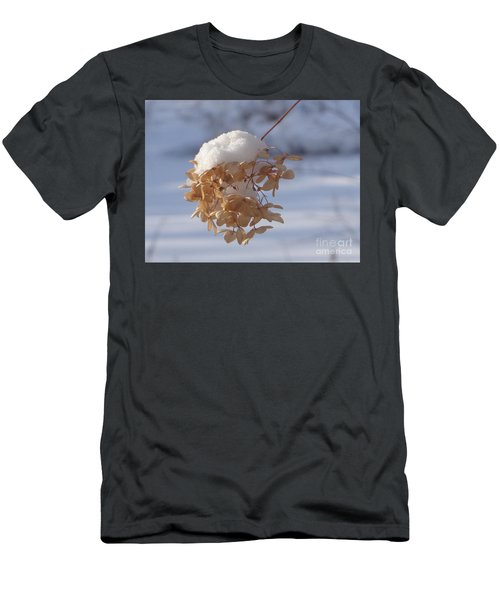 Snow-capped II Men's T-Shirt (Athletic Fit)