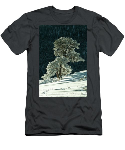 Snow Covered Tree - 9182 Men's T-Shirt (Athletic Fit)