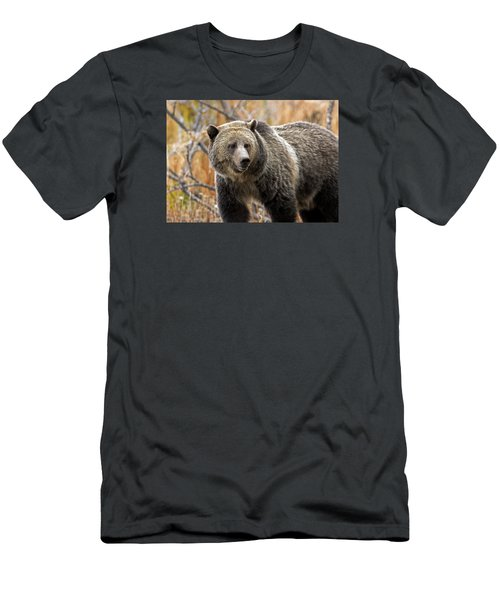 Snow's Mama Bear Men's T-Shirt (Athletic Fit)