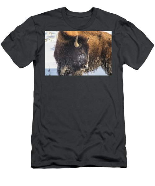 Snowy Bison Men's T-Shirt (Athletic Fit)