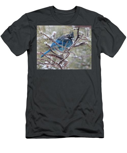 Snowy Bluejay  Men's T-Shirt (Athletic Fit)
