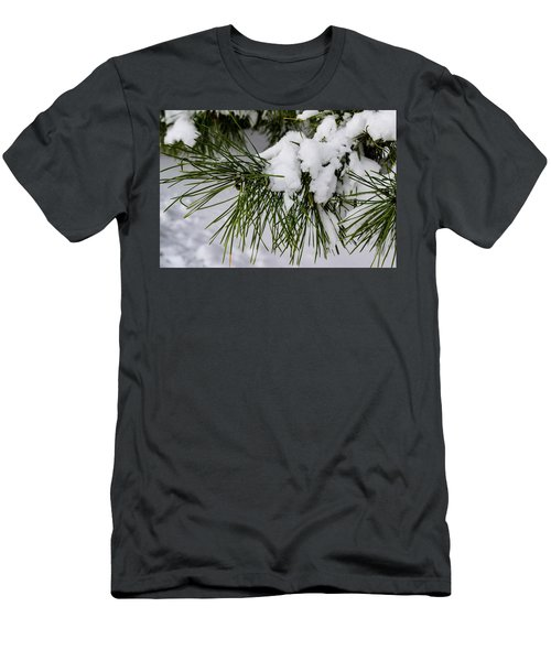 Snowy Branch Men's T-Shirt (Athletic Fit)