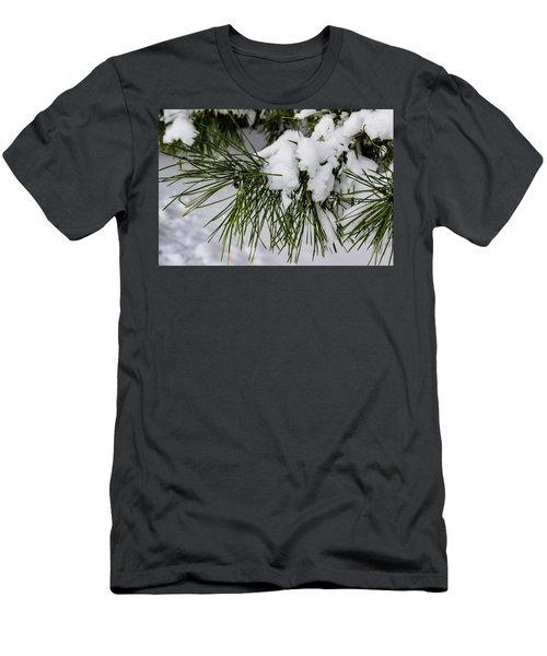 Snowy Branch Men's T-Shirt (Athletic Fit)