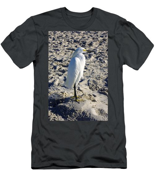 Snowy Egret At Naples, Fl Beach Men's T-Shirt (Athletic Fit)