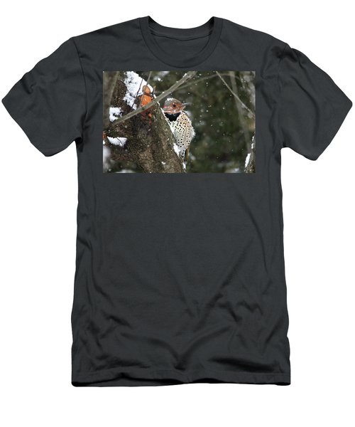 Snowy Northern Flicker Men's T-Shirt (Slim Fit) by Trina Ansel