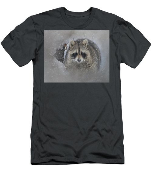 Snowy Raccoon Men's T-Shirt (Athletic Fit)