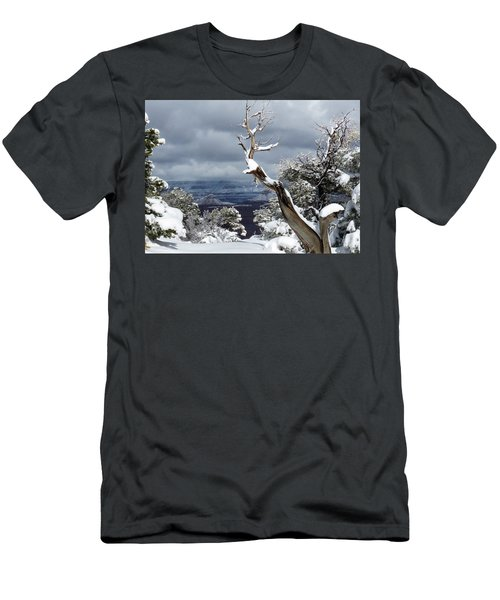 Snowy View Men's T-Shirt (Slim Fit) by Laurel Powell