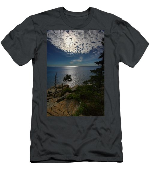 Soft Light On Otter Point Men's T-Shirt (Athletic Fit)