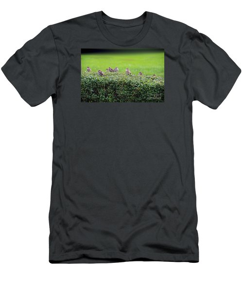 Sparrows Gathering Place  Men's T-Shirt (Slim Fit) by Yumi Johnson