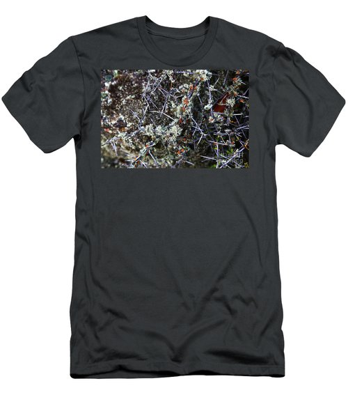 Spiky Matagouri And Lichen Men's T-Shirt (Athletic Fit)
