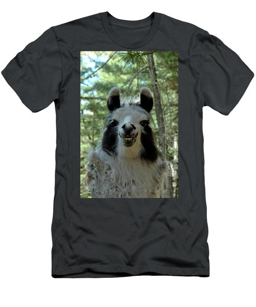 Men's T-Shirt (Slim Fit) featuring the photograph Spooky Llama by LeeAnn McLaneGoetz McLaneGoetzStudioLLCcom