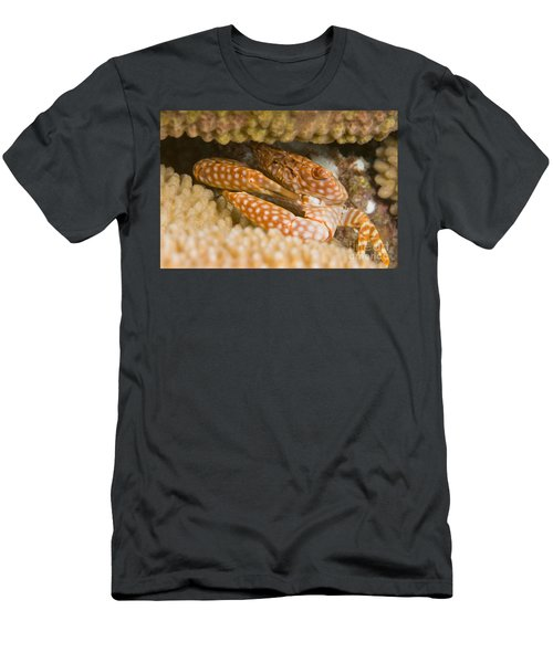 Spotted Guard Crab Men's T-Shirt (Athletic Fit)