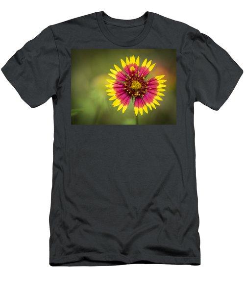 Spring Indian Blanket Men's T-Shirt (Athletic Fit)