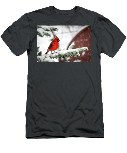 Spring Recess Men's T-Shirt (Athletic Fit)