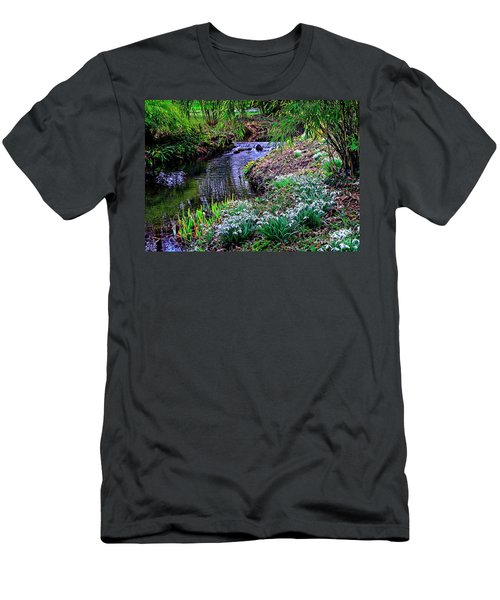 Spring Snowdrops By Stream Men's T-Shirt (Athletic Fit)