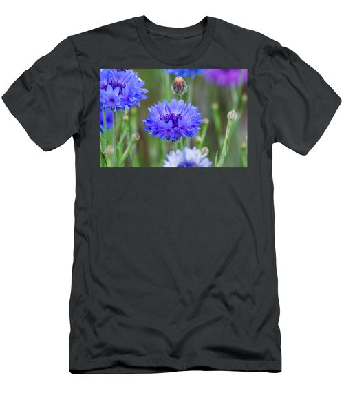 Springtime Blues Men's T-Shirt (Athletic Fit)