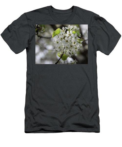 Sprung - Men's T-Shirt (Athletic Fit)