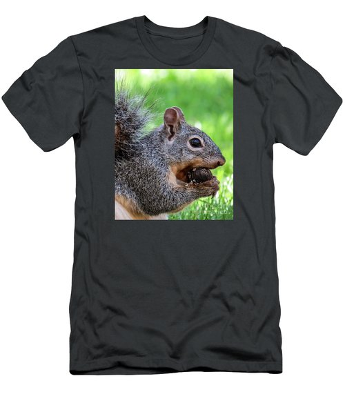Squirrel 1 Men's T-Shirt (Athletic Fit)