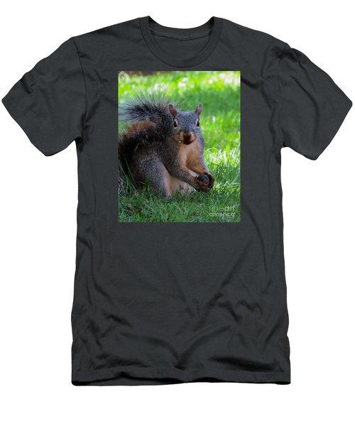 Squirrel 2 Men's T-Shirt (Athletic Fit)