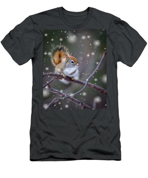 Squirrel Balancing Act Men's T-Shirt (Athletic Fit)