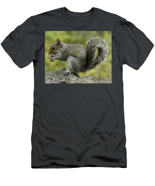 Squirrel, On The Hop Men's T-Shirt (Athletic Fit)