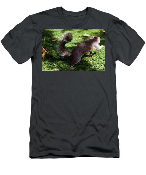 Squirrel Running Men's T-Shirt (Athletic Fit)