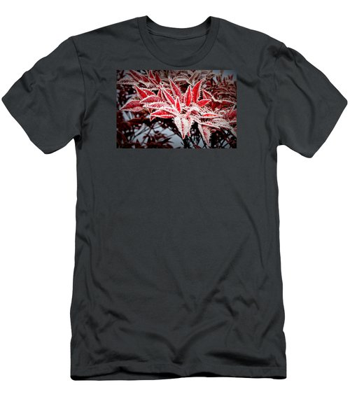 Men's T-Shirt (Slim Fit) featuring the photograph Star Leaves by Katie Wing Vigil