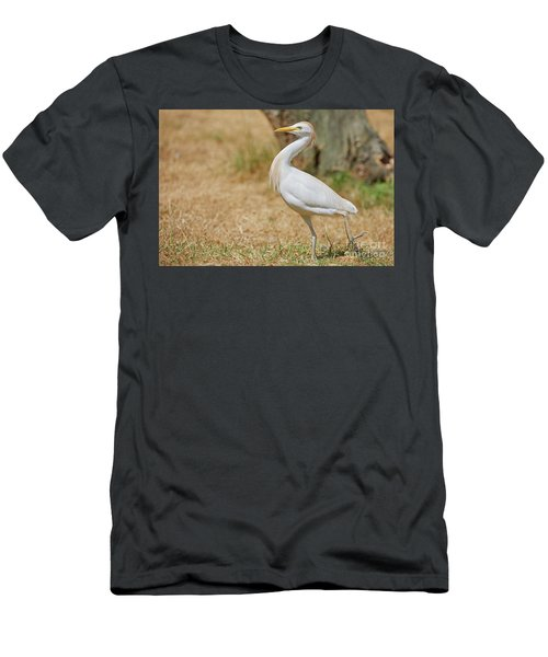 Men's T-Shirt (Athletic Fit) featuring the photograph Stately Walking Cattle Egret by Nick Biemans