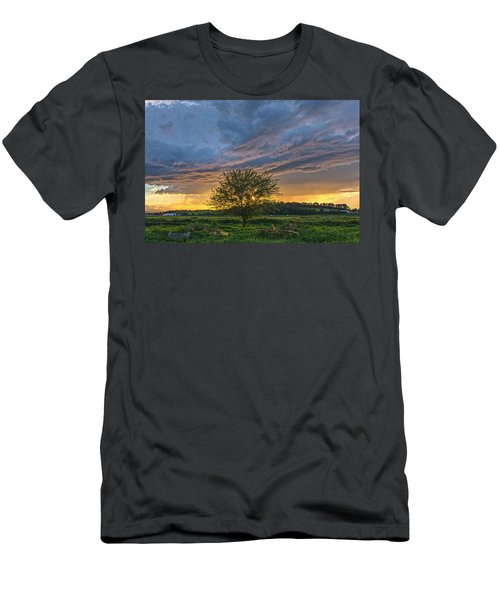 Storm Tree Men's T-Shirt (Athletic Fit)