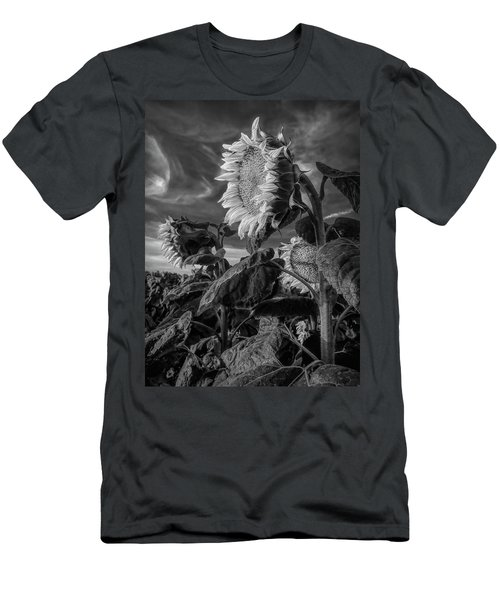 Strength Of A Sunflower Men's T-Shirt (Athletic Fit)