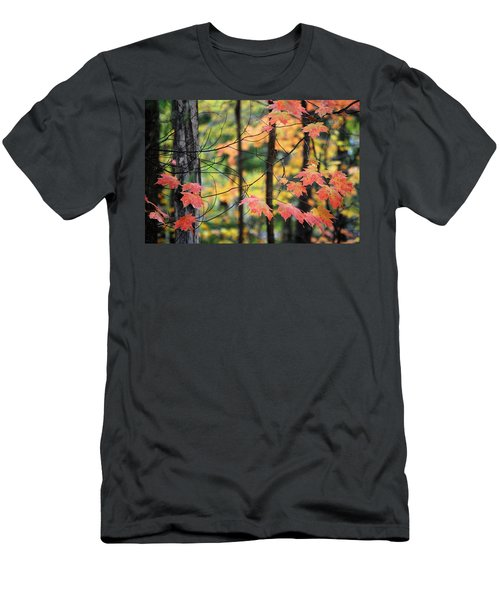 Stringing Up The Colors Men's T-Shirt (Athletic Fit)