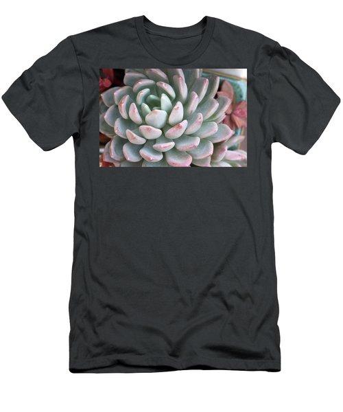 Succulent Beauty Men's T-Shirt (Slim Fit) by Catherine Lau