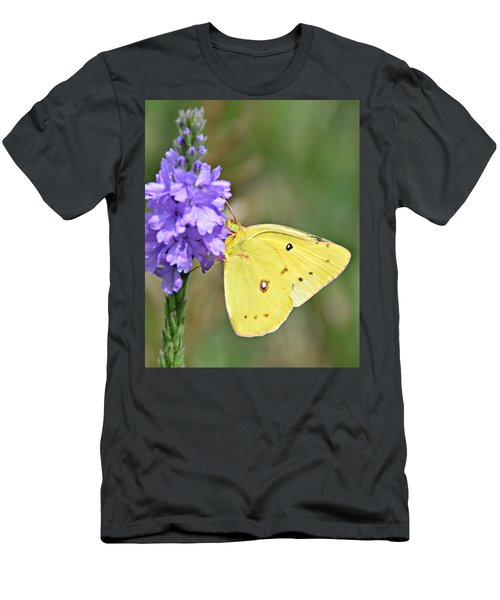 Sulfur Butterfly Men's T-Shirt (Athletic Fit)