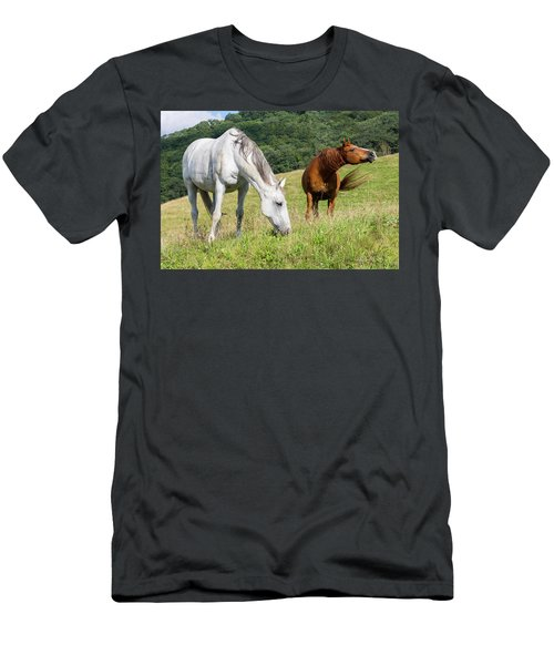 Summer Evening For Horses Men's T-Shirt (Athletic Fit)
