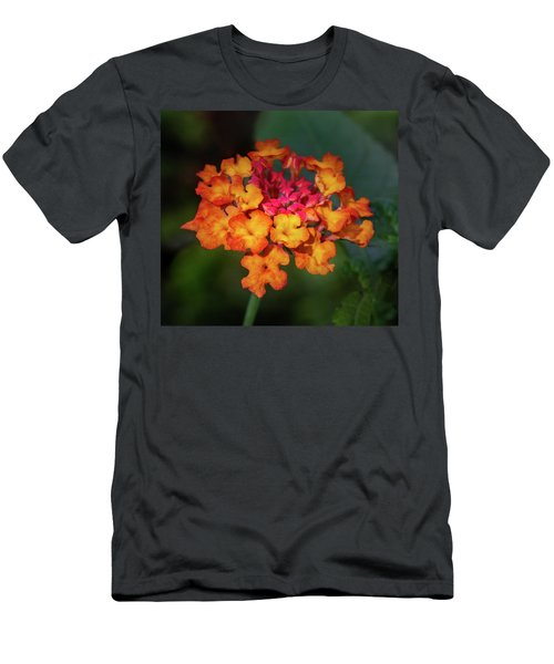 Summer Floral Colors Men's T-Shirt (Athletic Fit)