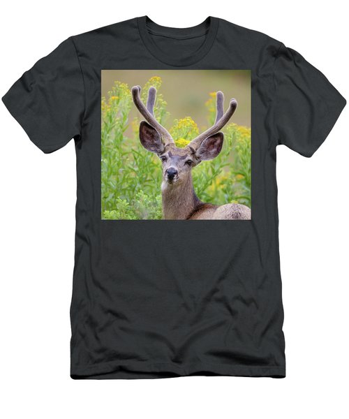 Summer Mule Deer Men's T-Shirt (Slim Fit) by Jack Bell